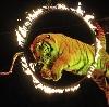 Цирки в Ермолаево